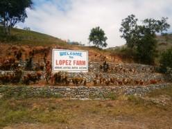 Lopez Farm (Nueva Vizcaya)