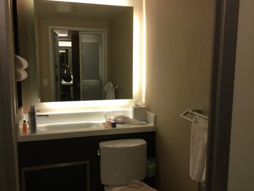 The room's bathroom