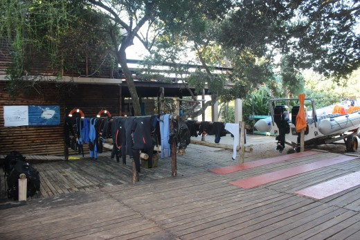 Dive Camp, boat launch and kit area