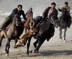 Buzkashi: The National Game of Afghanistan