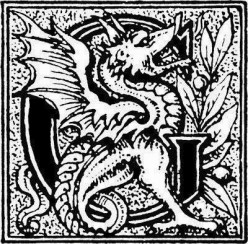Wichard Saga - an Evil Dragon and a Dutch Hero