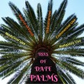 The Benefits and Uses of Date Palms