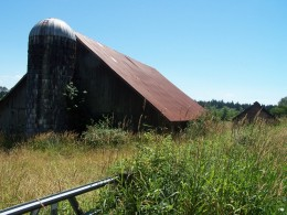 The barn was my special place