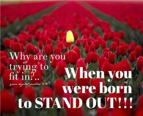"Why are you trying to ""fit in""?...When you were born to ""stand out""!!!"