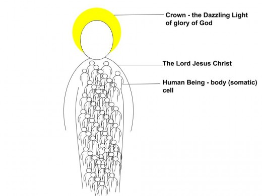 This diagram portrays how the souls of God's people are contained in Christ. All who are in Christ have eternal life because they are contained in Christ who lives forever. They have eternal life through faith in the Lord Jesus.