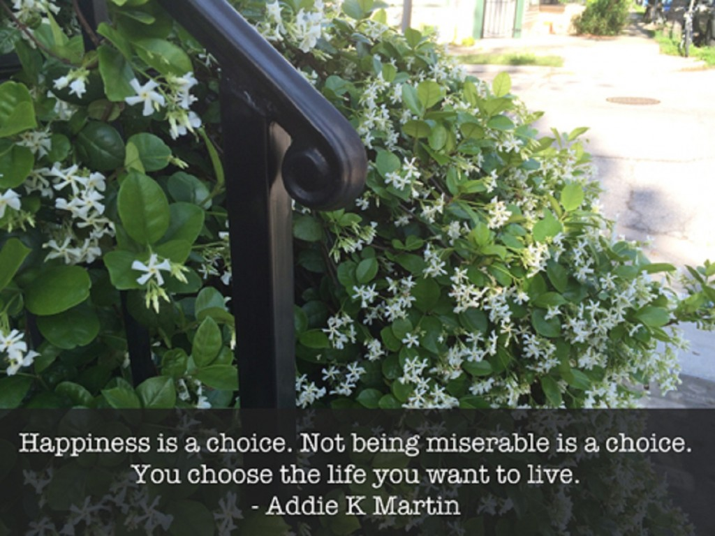 a discussion on happiness being a choice I think the key to life is just being a happy person, and happiness will bring you success ~diego val  happiness is a conscious choice,.
