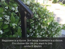 Happiness is a Choice. Not being miserable is a Choice. You choose the life you want to live!