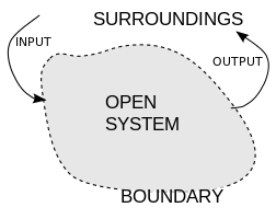 The open system theory is the foundation of black box theory. Both have focus on input and output flows, representing exchanges with the surroundings.