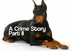 A Crime Story Part II