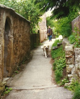 Walking a dog along a path up by the city wall in Rothenburg.