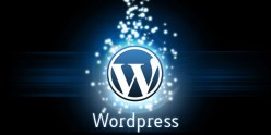 Points to be Kept in Mind While using WordPress CMS