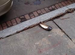 Where's Hillary's Shoe?