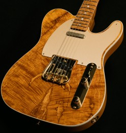 5 Best Telecasters Guitars With Maple Tops
