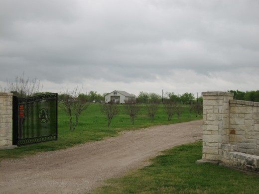 The Branch Davidian property today. The small church in this photo stands in place of the much larger Mount Carmel compound.