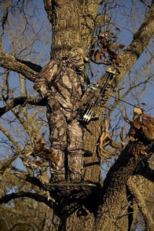 Hunter in a Tree Stand