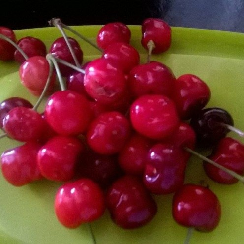 Cherries picked for making a liquor.