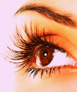 The Top 5 Mascara's Found At A Store Near You