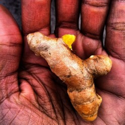 Turmeric: The Super Spice