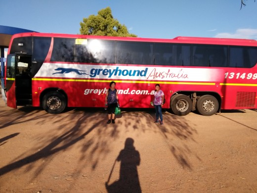 The bus that took us to Alice Springs