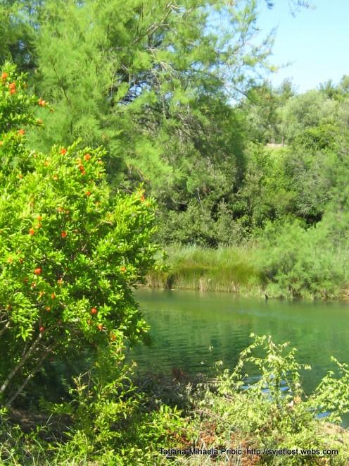 Green river Karishnica