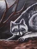 Old Raccoon Moon