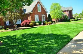 Instantly beautify your new lawns with sods using sod staples or landscape staples.