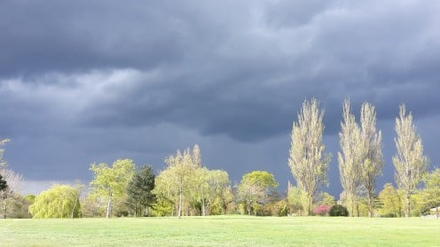 Late afternoon sun and a stormy sky