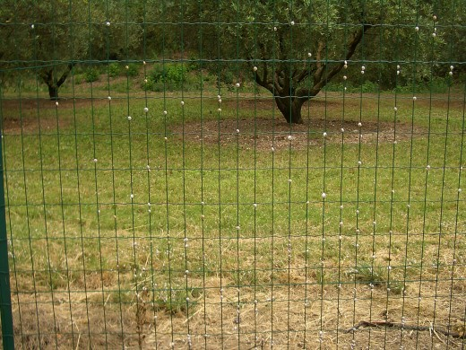 To install animal fences and electrical fences, make sure it looks sturdy and can really stand bumps.