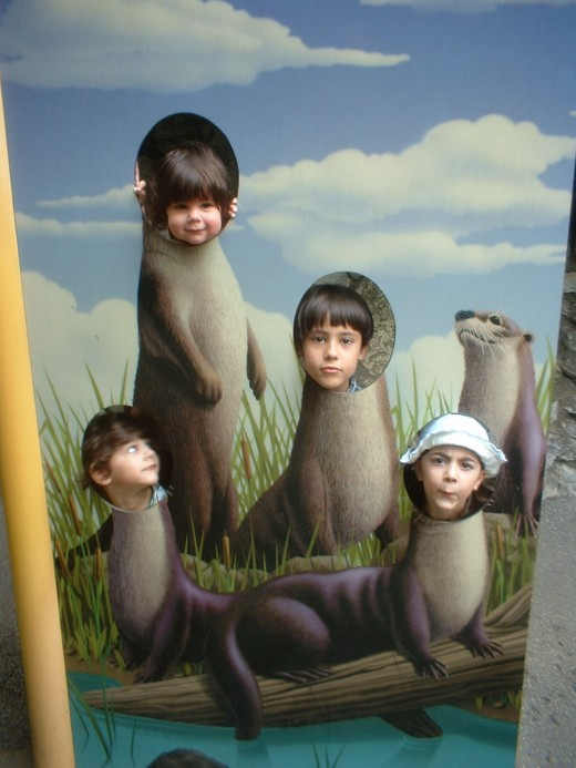 My otter family