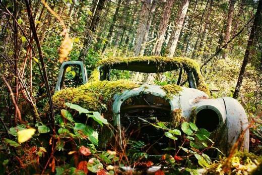 Abandoned Car, Victoria BC
