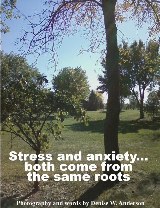 Both stress and anxiety stem from what has happened in our past. Until we are able to deal with these issues, they will continue to cause us problems in our present.