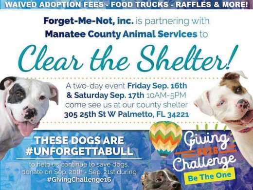 special event to feature the bully breeds as example of community activism in saving these dogs
