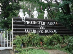 Ninoy Aquino Park and Wildlife Nature Center in Manila in the Philippines
