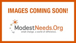 Modest Needs