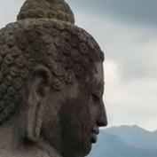Raj Venkata profile image