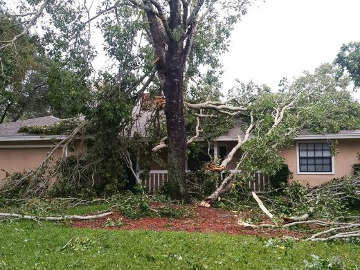 This Titusville, Florida (Brevard County)  home was damaged by trees which fell on it during the storm.
