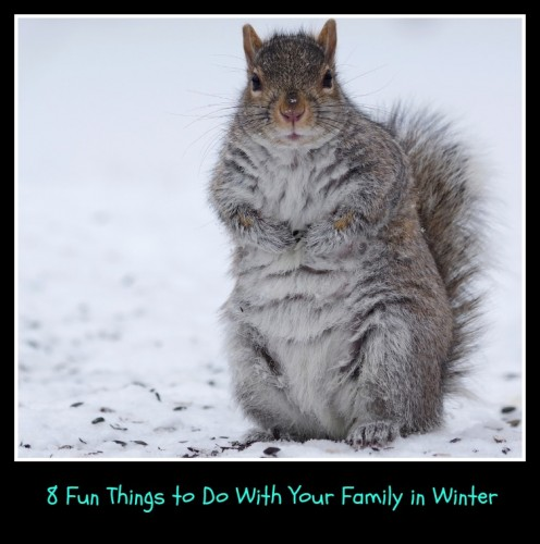 8 Fun Activities to Do With Kids in Winter