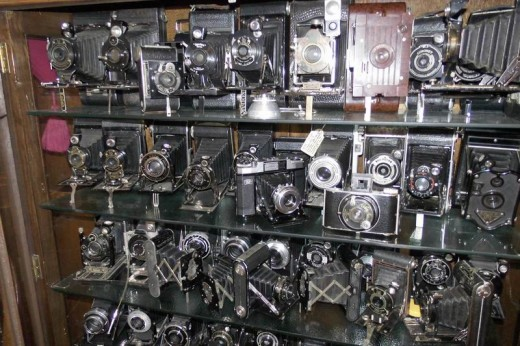 Collecting Classic Cameras. Image by Frances Spiegel. All rights reserved.