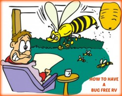 How to Deal With Bugs and Pests During Your RV Vacations.