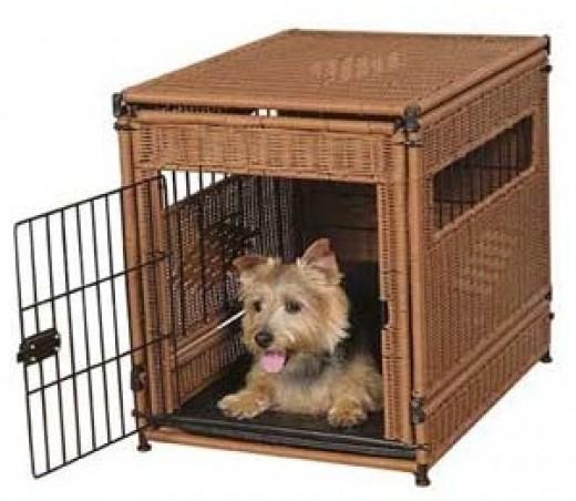 Cool Dog Crates