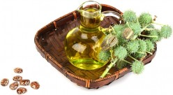 Castor Oil: A reliable home remedy  to Constipation
