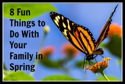 8 Fun Things to Do With Your Kids in Spring