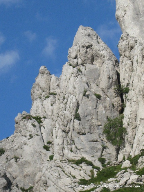 Do you see human face in this cliff?