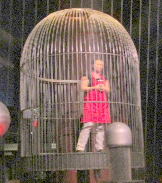 """Humans stuck in a """"bird"""" cage as their avian caretakers look on is a theme that sometimes pops up in horror stories. - Photo by George Sommers"""