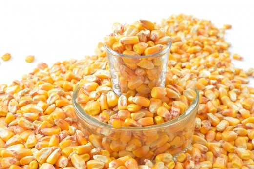Corn is just one grain used in pet food.