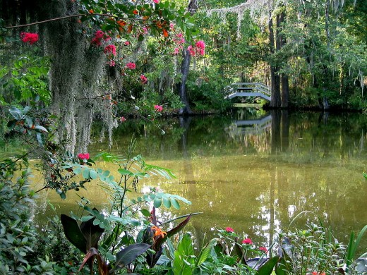 Magnolia Plantation is a popular place to visit in Charleston.