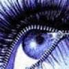 cityslickermom profile image