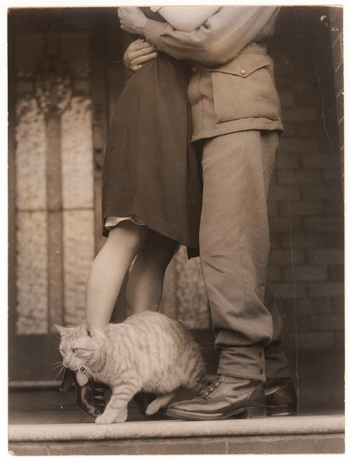Soldier's goodbye and  Bobbie the cat, circa 1939