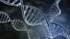 Nature's perfect storage device – DNA!