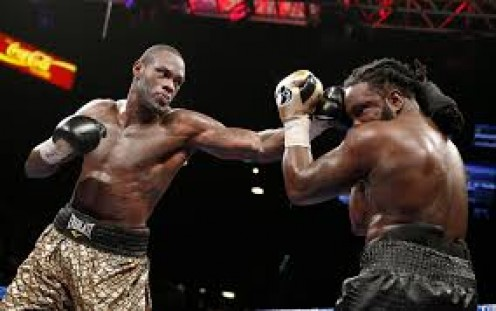 The Bronze Bomber won a clear unanimous decision over Bermane Stiverne to become the WBC heavyweight champion of the world